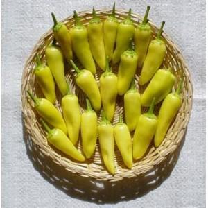 semi di Peperoncino Hungarian Yellow - piccante