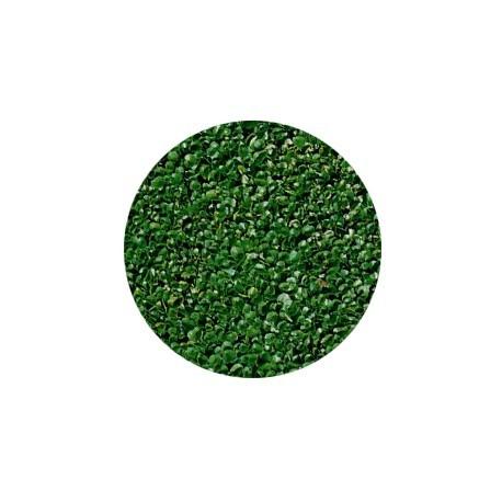 Semi di Dichondra repens tappezzante - confezione da 200 gr