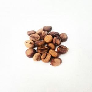 Semi di Caffè Robusta (Coffea canephora)
