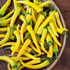 Semi di Peperoncino Paprika Giallo (poco piccante)